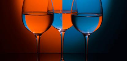 ¿Por qué un Wine Coach?
